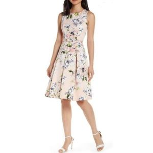 Eliza J Floral Faille Fit & Flare Belted Dress